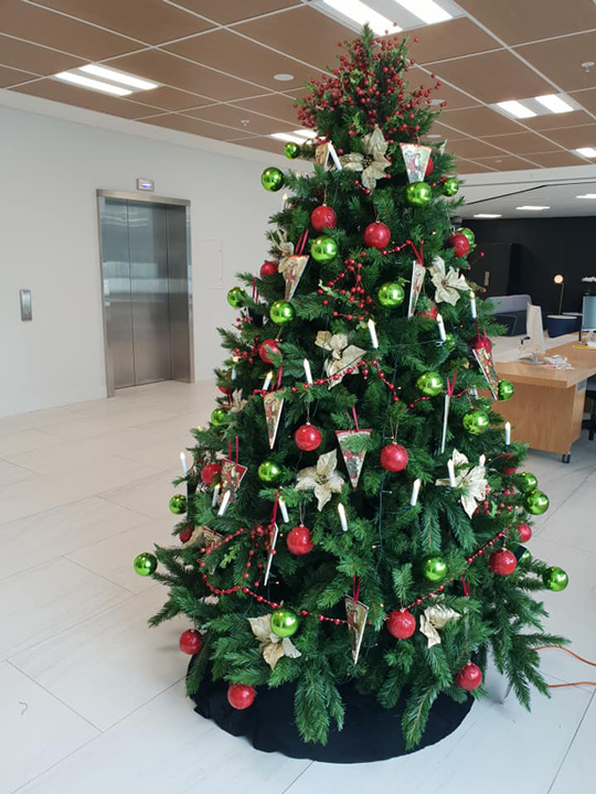 Christmas Tree Masterpiece, ANZ